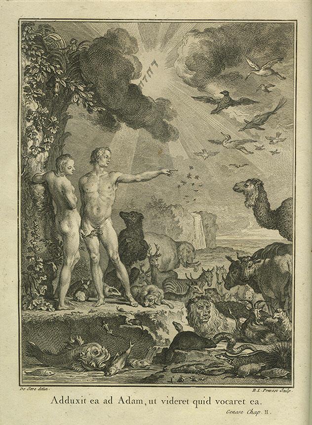 Jacques Christophe Valmont-Bomare, Dictionnaire Raisonné Universel D'Histoire Naturelle … Quatrième édition, Tome Premier, Lyon 1791